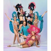 Кослюмы для всех направлений танца, перьевые каркасы, головнык уборы, маски,тренировочная форма и т.д. фото