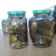 Огурчики маринованные 1800 мл (1800г) от торговой марки Дядя Ваня фото