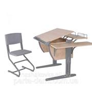 Набор школьной мебели Дэми СУТ.14-02 клен/серый со стулом фото