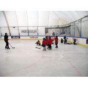хоккейные борта фото