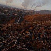 Составление отчетов по экологии фото