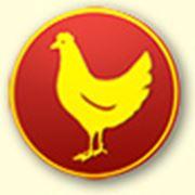 Премиксы для птицы intersorb фото