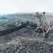 Угли бурые, каменные фото