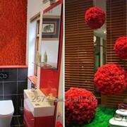 Мох Ягель Красный Коробка 4 кг фото