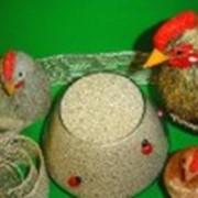 Комбикорм для сельскохозяйственной птицы фото