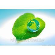 Лицензия на обращение с озоноразрушающими веществами фото