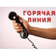 """Бесплатные консультации по телефону """"Горячая линия"""" (017) 3804475 фото"""