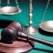 Юридические услуги - Арбитражная практика фото