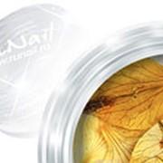 RuNail, дизайн для ногтей: сухоцветы (Dry flower) DRFL012 в пластиковой банке фото