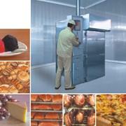 Оборудование мясоперерабатывающее: камеры гастрономические фото