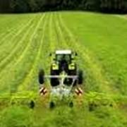Агрохимические консультации фото