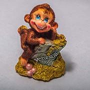 Копилка Озорная обезьянка на монетах с купюрой 13 см фото