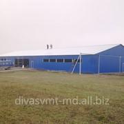 Ангары мини фермы свинофермы в Молдове металоконструкций фото