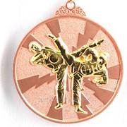 Медаль рельефная таэквондо - бронза фото