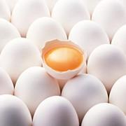 Яйцо куриное Organic eggs, домашнее фото