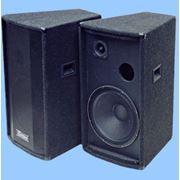 Универсальная двухполосная акустическая система. Бюджетная серия Модель 15BT фото