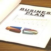 Разработка бизнес-планов, управляемых финансовых моделей фото