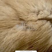 Натуральный мех лисы фото