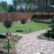 Ландшафтный 3-d дизайн вашего сада фото