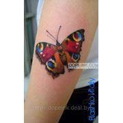Татуировка Бабочка (минимальный сеанс) фото