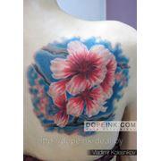 Татуировка Цветы (2 сеанса) фото