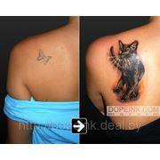 Татуировка Кошка Cover-up (2 сеанса) фото
