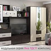 "Гостиная "" Яна"" композиция №3 фото"