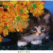 Котенок |Набор/Схема| фото