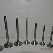 Клапан D50.09.009 (впуск.), D50.09.010 (выпуск.) фото