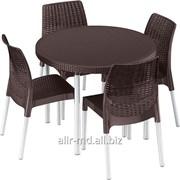 Комлект стол со стульями S5 JERSEY фото