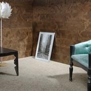 Стеновые панели Береза Каменный ручей фото