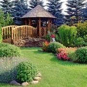 Ландшафтный дизайн сада, Дизайн сада Ялта, Крым фото