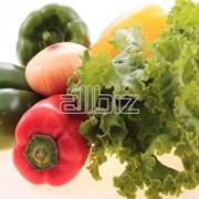 Овощ свежий в ассортименте фото