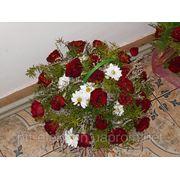 Квіти вазони фотография
