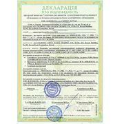 Декларация соответствия техническим регламентам фото