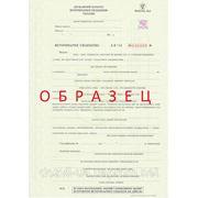 Ветеринарный сертификат, Ветеринарное свидетельство фото