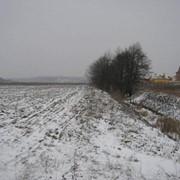 Белогородка участок 12 соток. Риелтор: Дмитрий фото