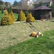 Стрижка газонов, покос бурьяна, вычесывание газона, борьба с сорняками на газоне фото