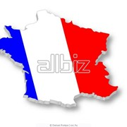 Курсы французского языка фото