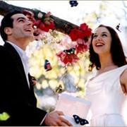 Свадьбы - поздравление бабочками фото
