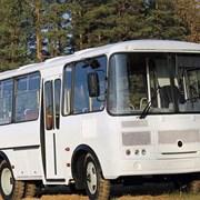 Аренда автобусов ПАЗ на 24 сидячих места  фото