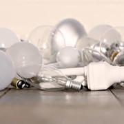 Утилизация лампочек фото