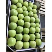 Яблоки оптом от производителя фото