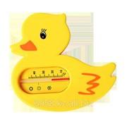 Термометр для воды Уточка 6+ фото