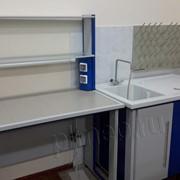 Мойка лабораторная химическая фото
