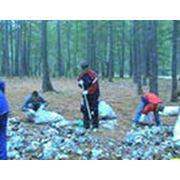 Генеральная уборка территорий фото