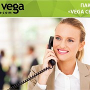 Пакет «Vega Сеть» фото