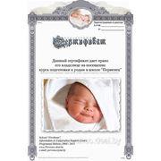 Подарочный сертификат для будущих мам! Особый знак внимания! фото