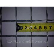 Сетка канилированная 30х30 d 3,7 фото