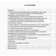 Оценка эффективности и совершенствование управления производственно-торговой деятельности на ООО «СИТИ-ГУРМЭ» фото